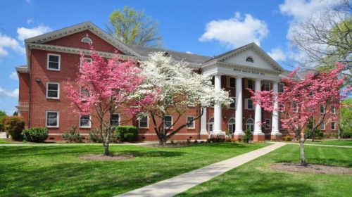 Carson-Newman University online MBA with no GMAT