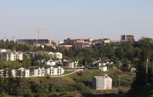 Washington State University online international MBA programs